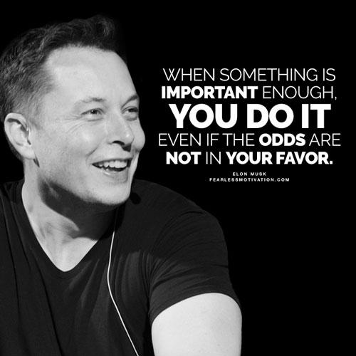 Effective Quote - Elon Musk